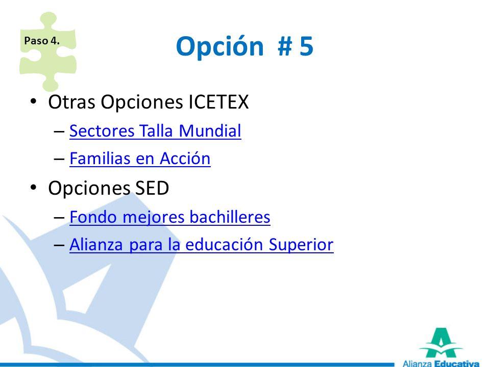 Opción # 5 Otras Opciones ICETEX Opciones SED Sectores Talla Mundial