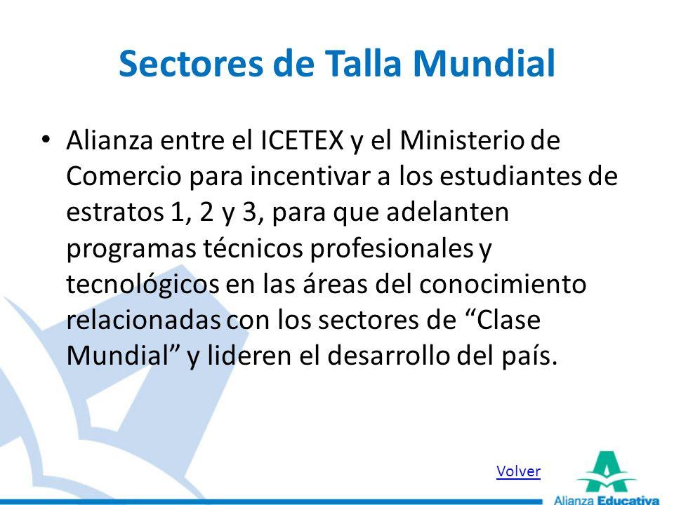 Sectores de Talla Mundial