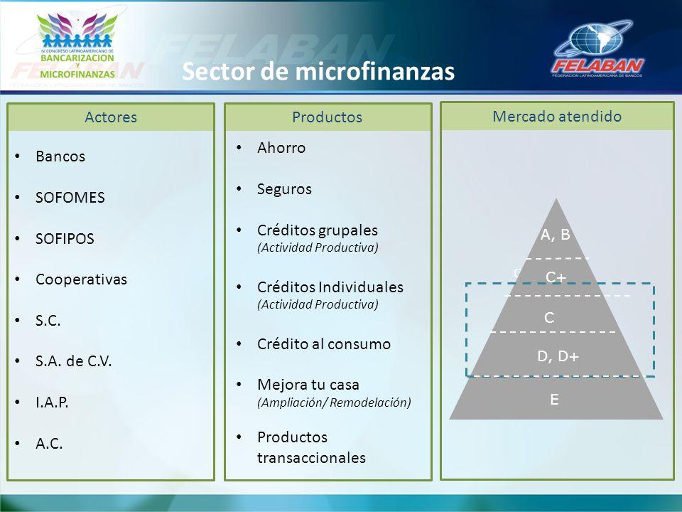 Sector de microfinanzas
