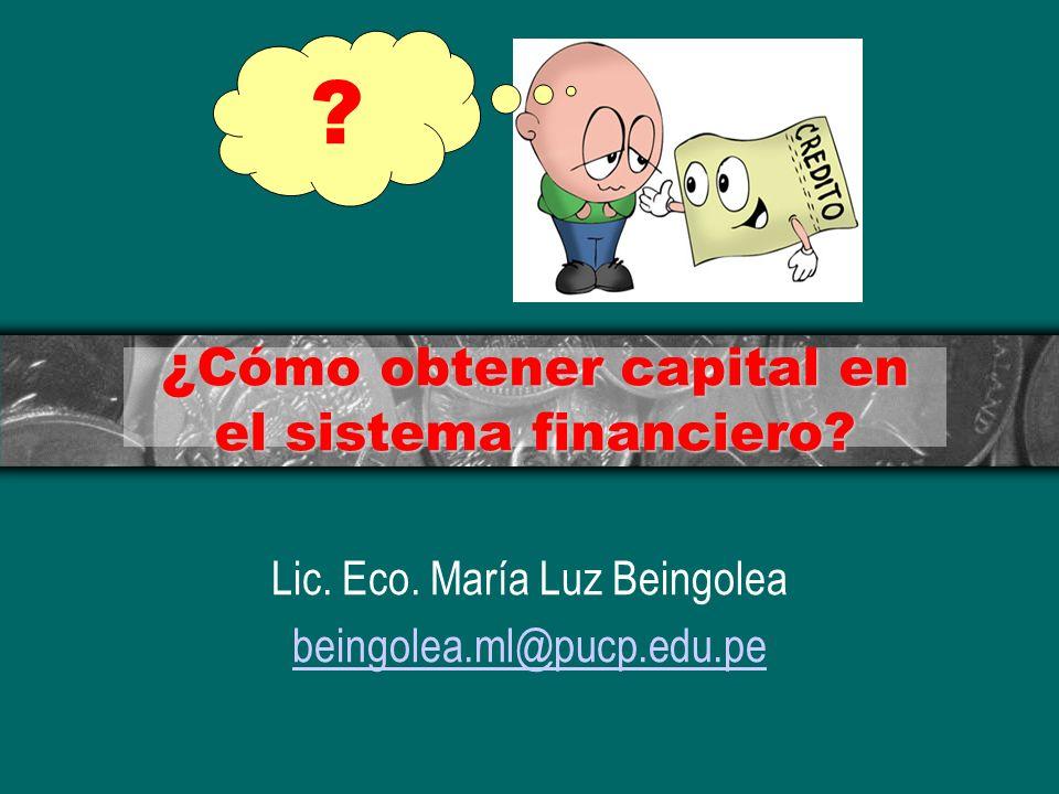 ¿Cómo obtener capital en el sistema financiero