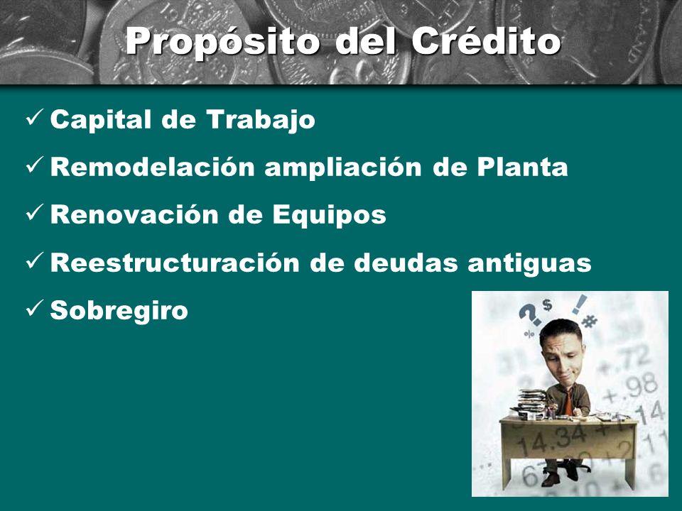 Propósito del Crédito Capital de Trabajo