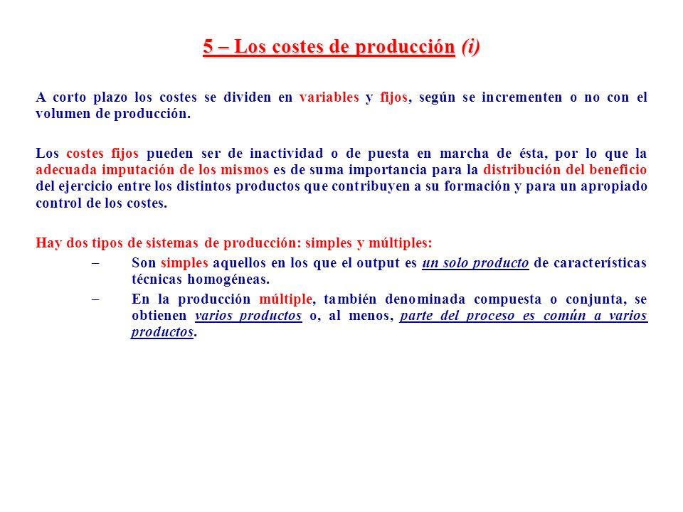 5 – Los costes de producción (i)
