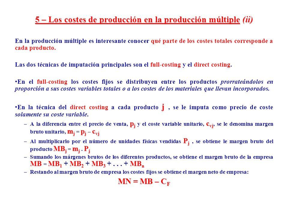 5 – Los costes de producción en la producción múltiple (ii)