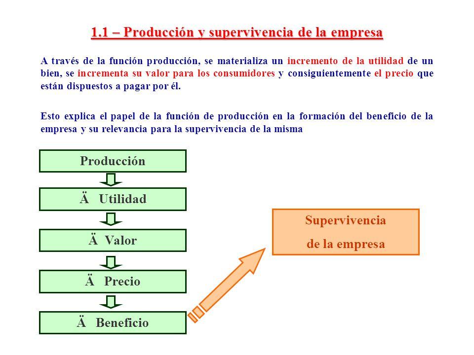 1.1 – Producción y supervivencia de la empresa