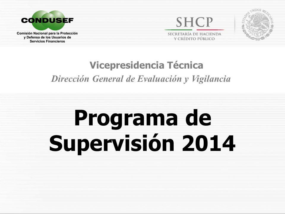 Programa de Supervisión 2014