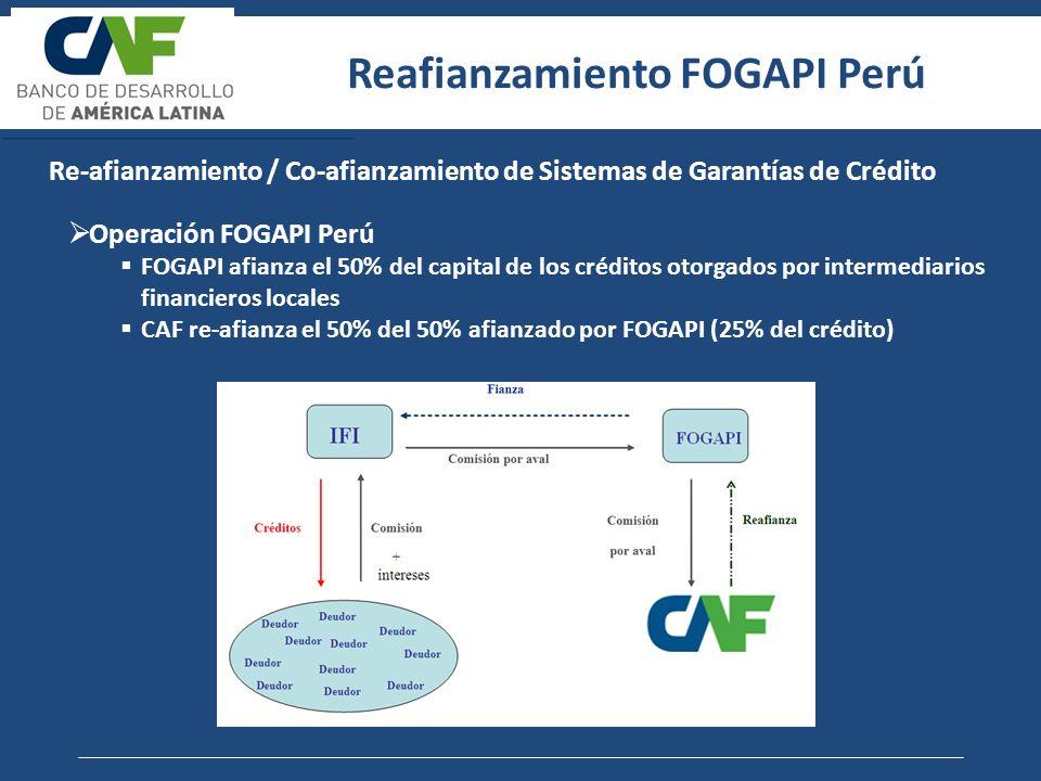 Reafianzamiento FOGAPI Perú