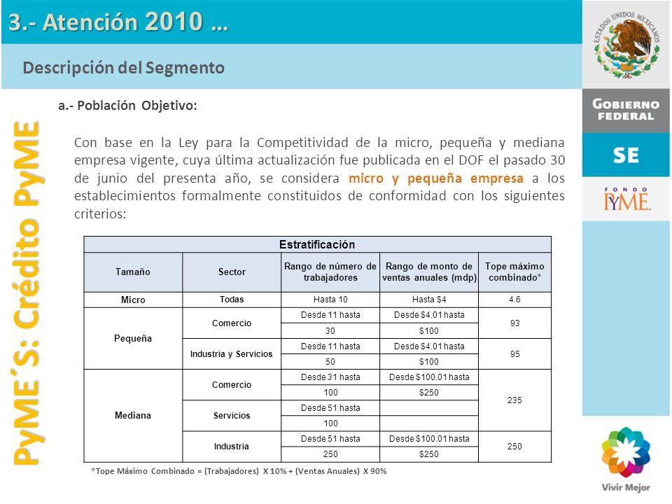 PyME´S: Crédito PyME 3.- Atención 2010 … Descripción del Segmento