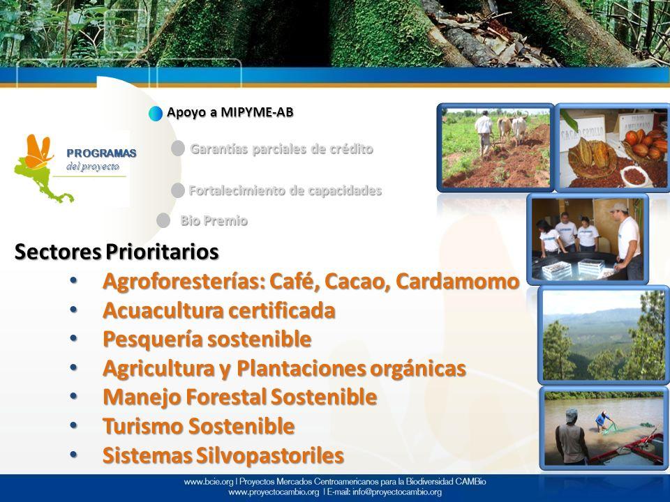 Sectores Prioritarios Agroforesterías: Café, Cacao, Cardamomo