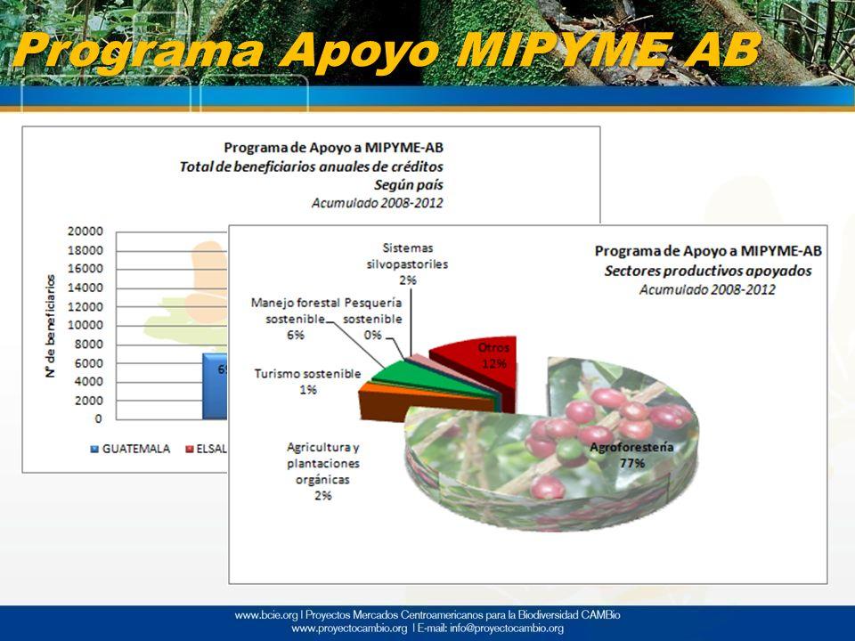 Programa Apoyo MIPYME AB