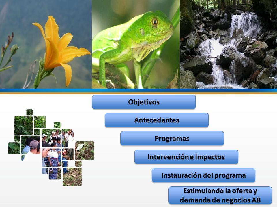 Instauración del programa Intervención e impactos Antecedentes