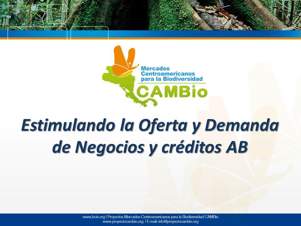 Estimulando la Oferta y Demanda de Negocios y créditos AB