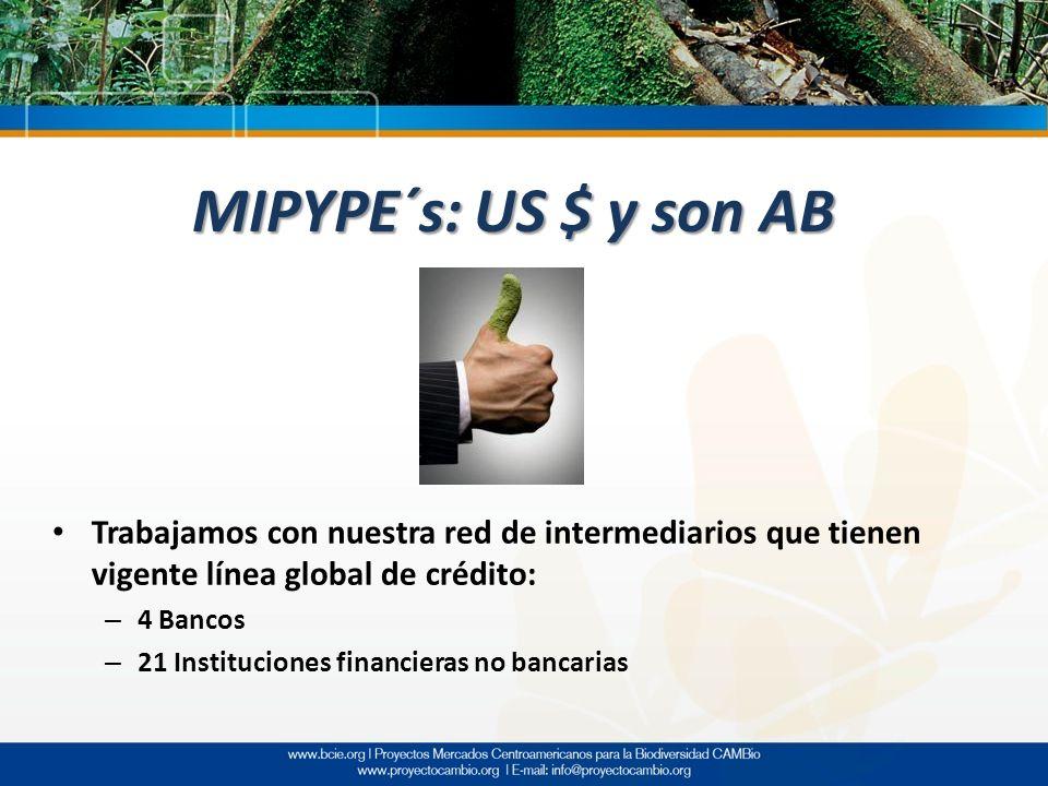 MIPYPE´s: US $ y son AB Trabajamos con nuestra red de intermediarios que tienen vigente línea global de crédito: