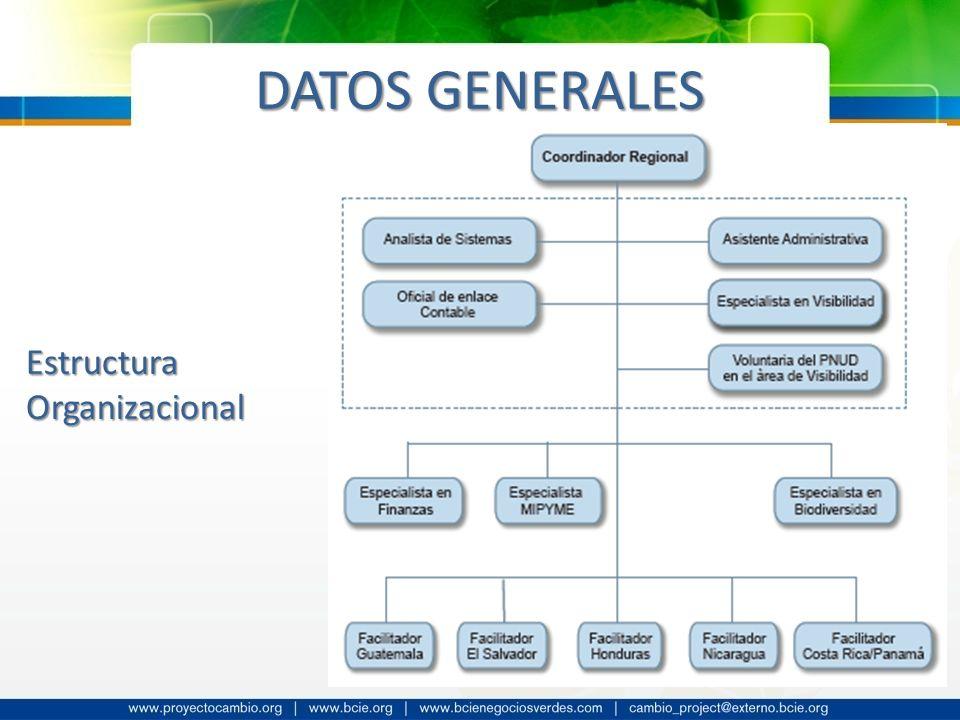 DATOS GENERALES Estructura Organizacional