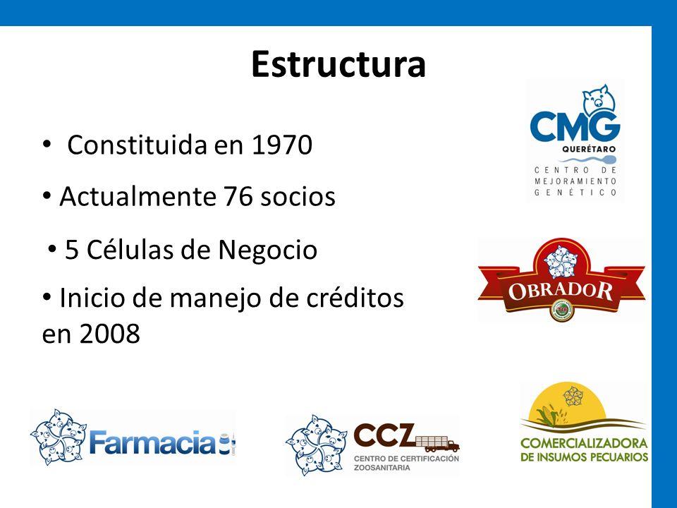 Estructura Constituida en 1970 Actualmente 76 socios