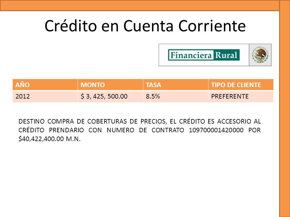 Crédito en Cuenta Corriente