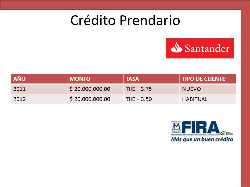 Crédito Prendario AÑO MONTO TASA TIPO DE CLIENTE 2011 $ 20,000,000.00