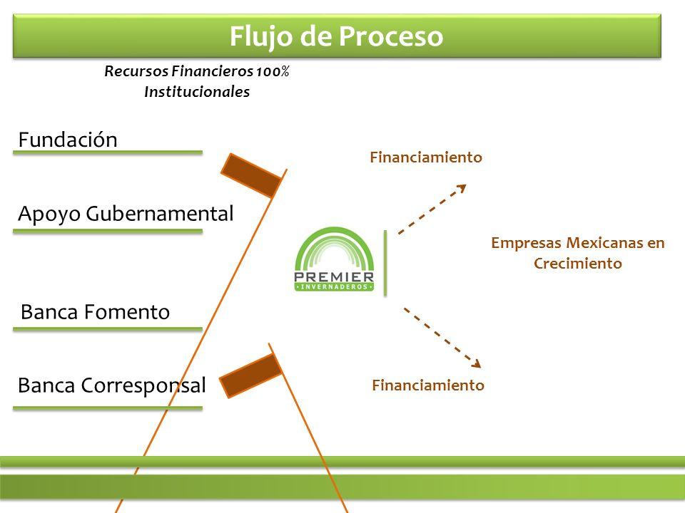 Flujo de Proceso Fundación Apoyo Gubernamental Banca Fomento