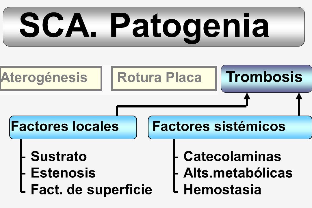 SCA. Patogenia Trombosis Aterogénesis Rotura Placa Factores locales