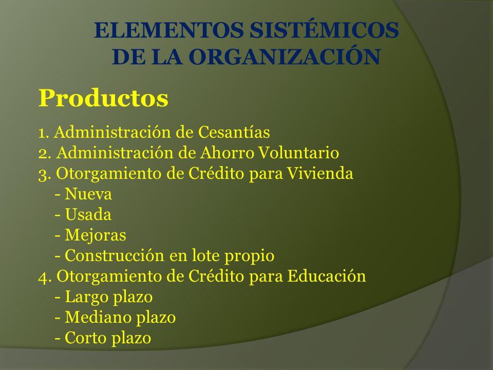 Productos ELEMENTOS SISTÉMICOS DE LA ORGANIZACIÓN