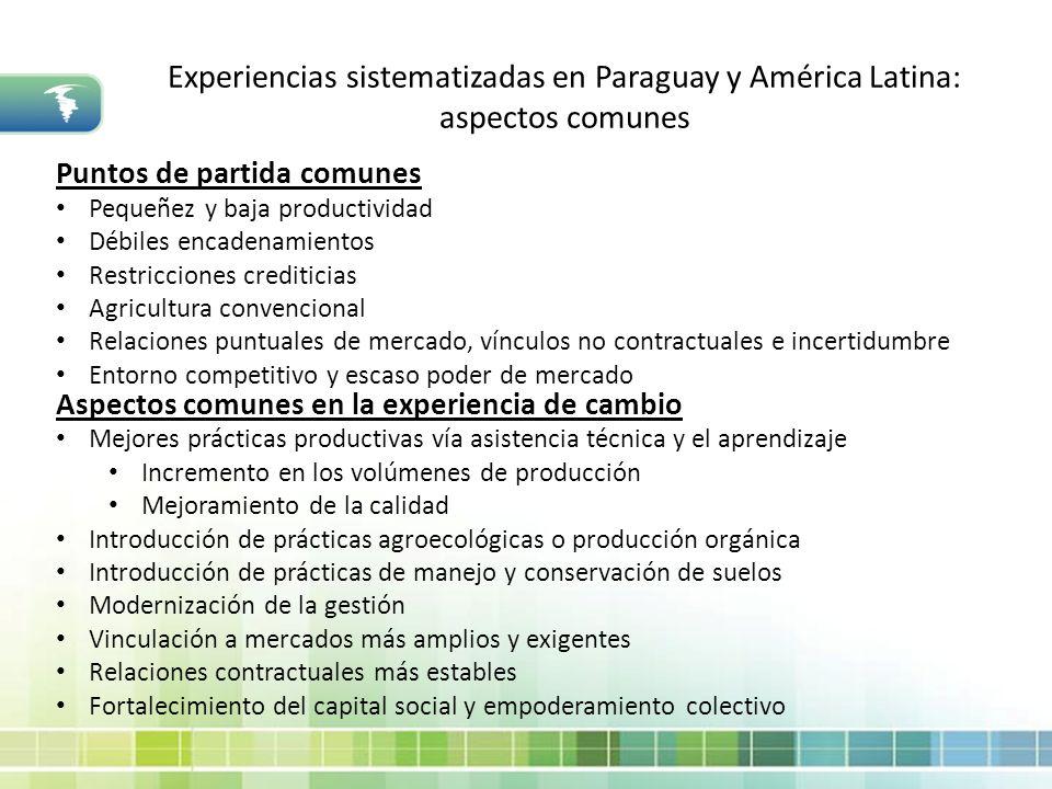 Experiencias sistematizadas en Paraguay y América Latina: aspectos comunes