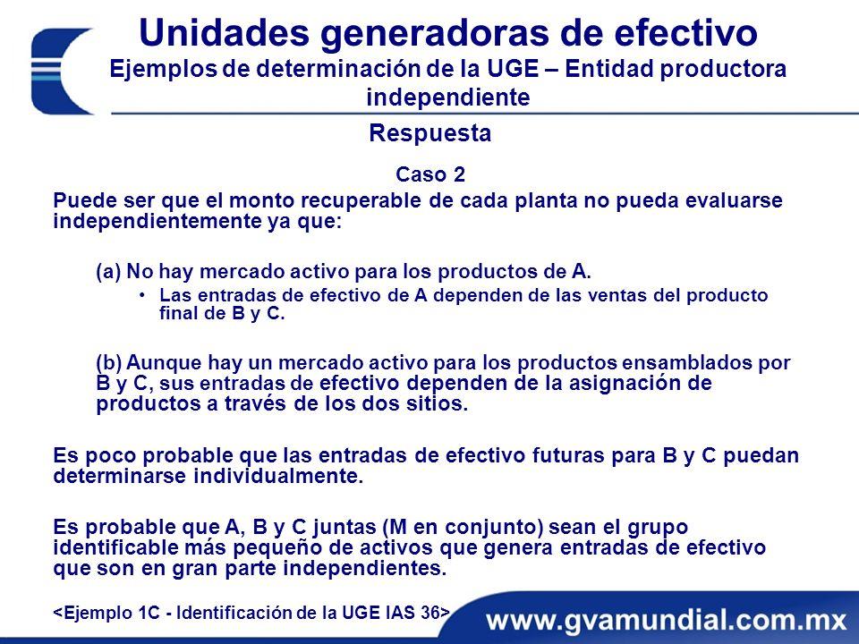 Unidades generadoras de efectivo Ejemplos de determinación de la UGE – Entidad productora independiente
