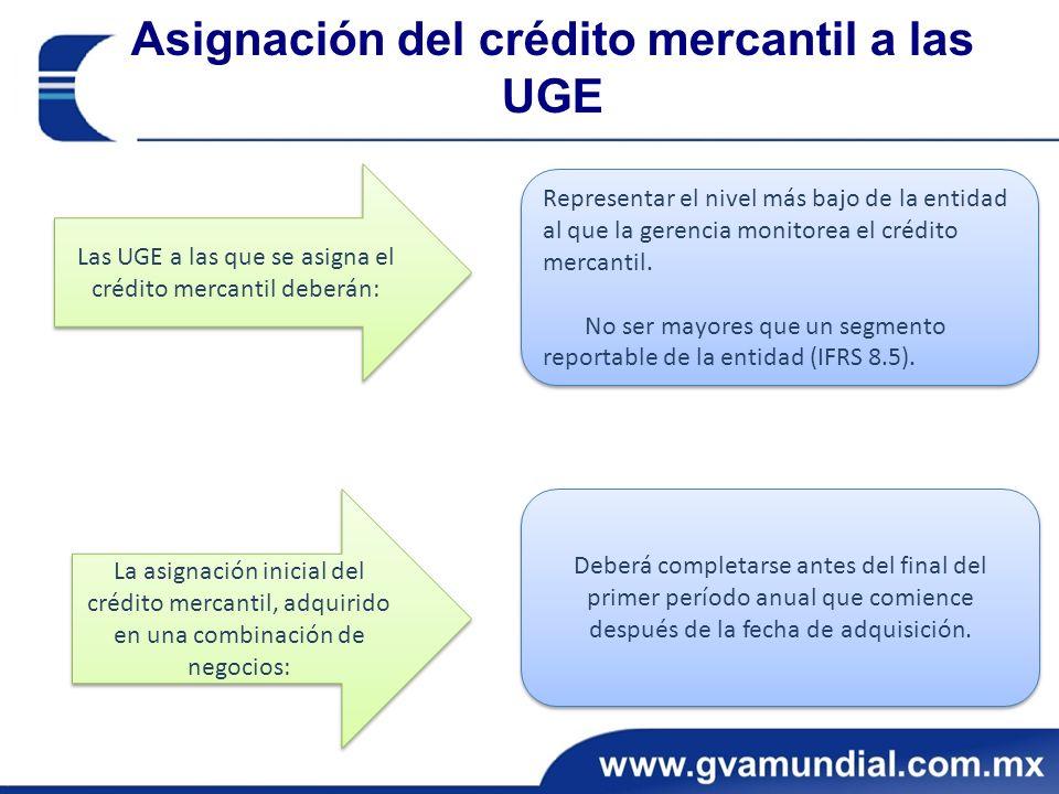 Asignación del crédito mercantil a las UGE