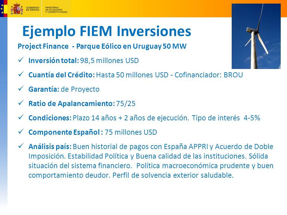 Ejemplo FIEM Inversiones