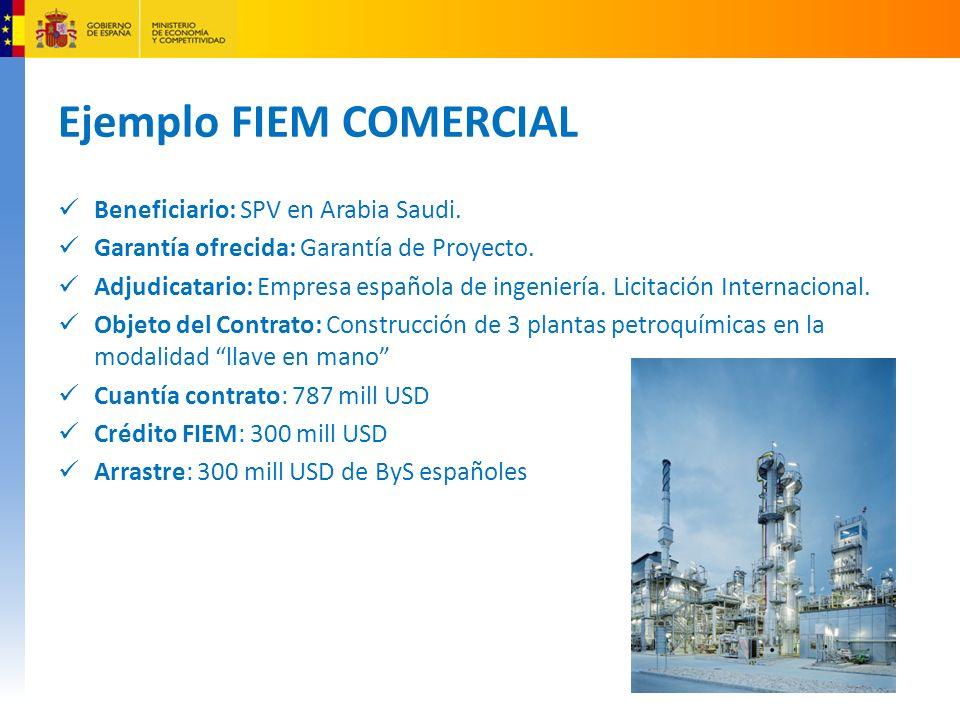 Ejemplo FIEM COMERCIAL