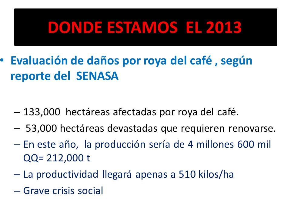 DONDE ESTAMOS EL 2013 Evaluación de daños por roya del café , según reporte del SENASA. 133,000 hectáreas afectadas por roya del café.