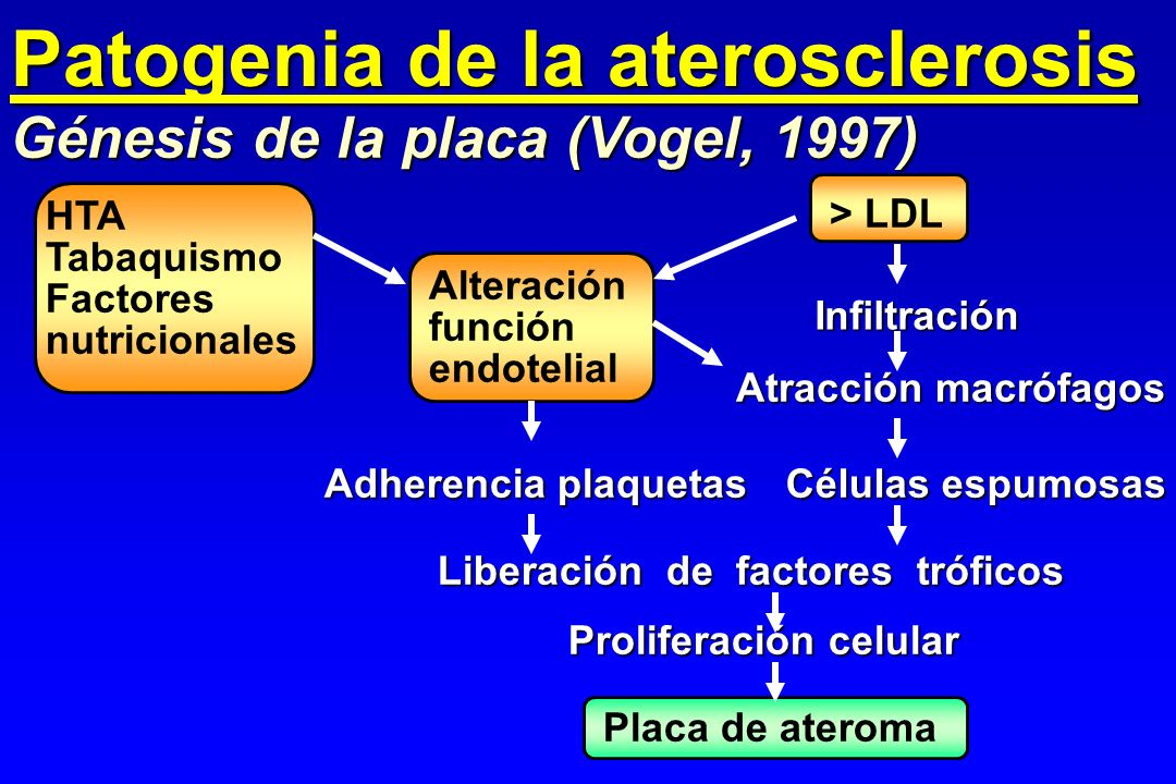 Patogenia de la aterosclerosis