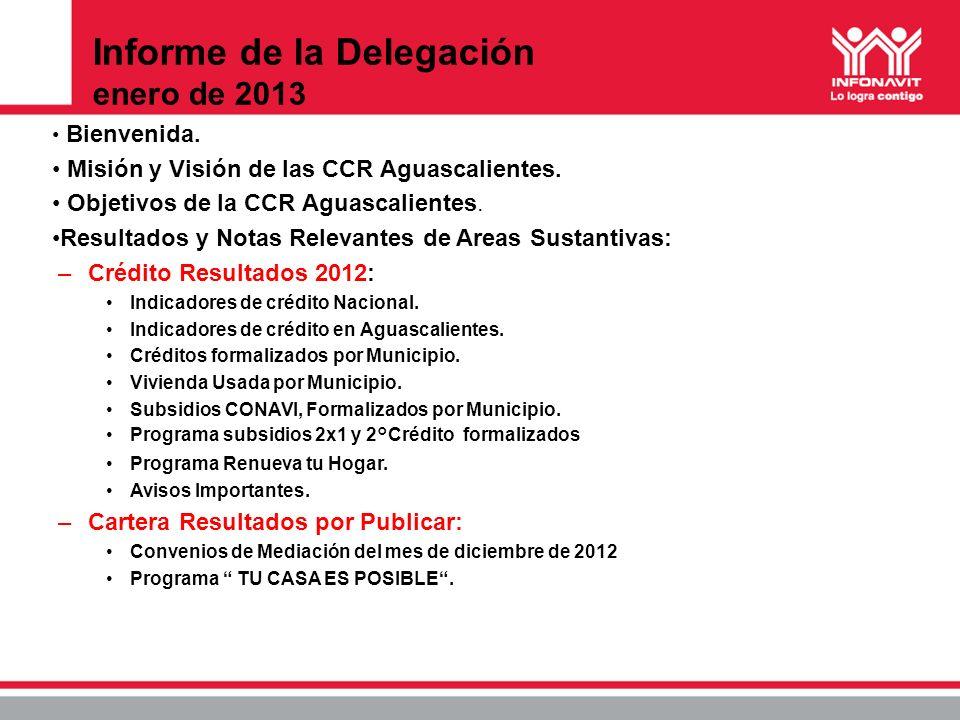 Informe de la Delegación enero de 2013
