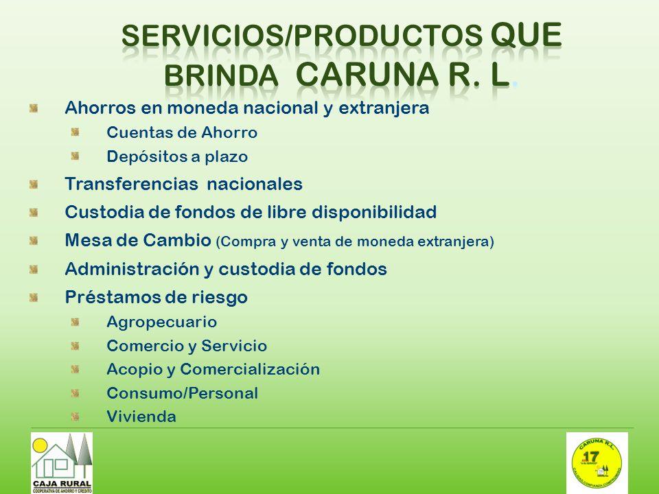 Servicios/productos que brinda CARUNA R. L.