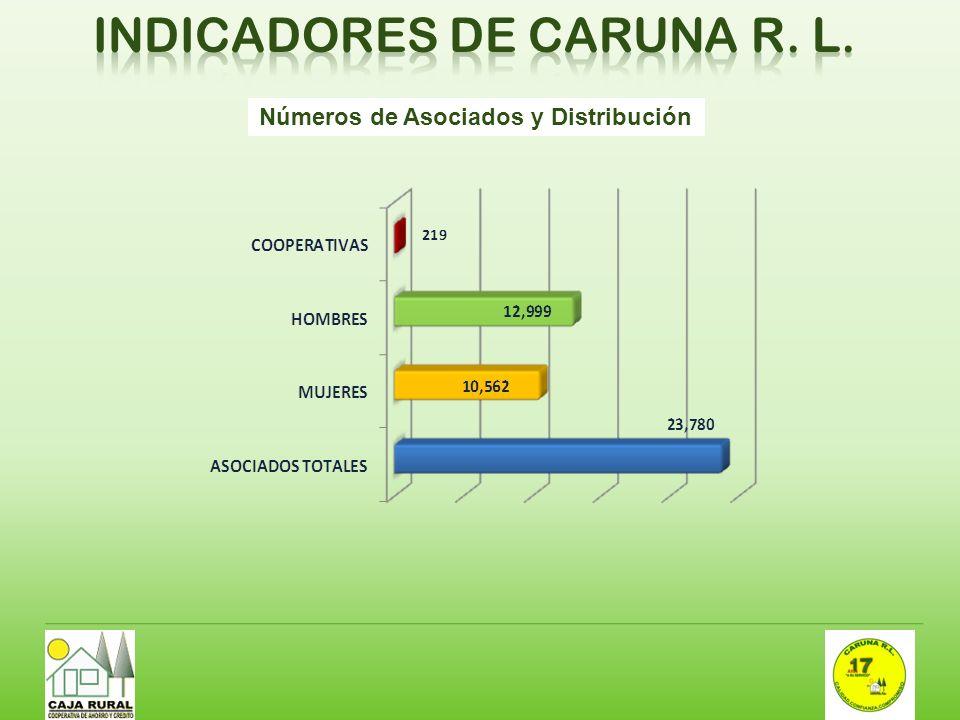 INDICADORES DE CARUNA R. L.
