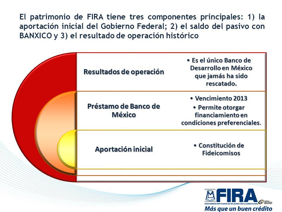 Resultados de operación Préstamo de Banco de México Aportación inicial