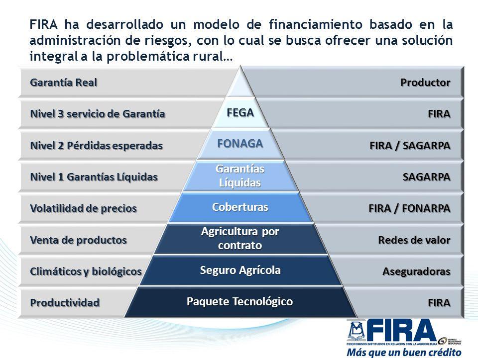 Agricultura por contrato