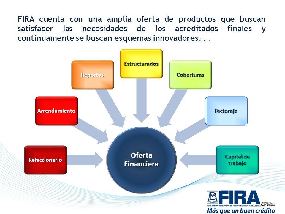 FIRA cuenta con una amplia oferta de productos que buscan satisfacer las necesidades de los acreditados finales y continuamente se buscan esquemas innovadores. . .