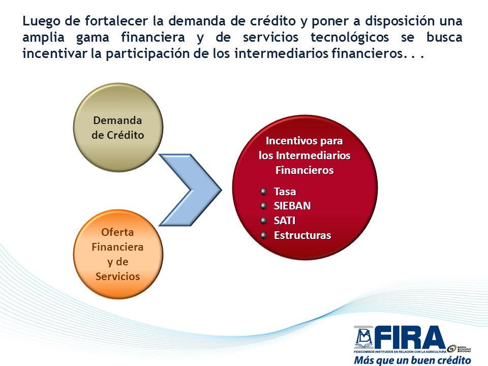 Luego de fortalecer la demanda de crédito y poner a disposición una amplia gama financiera y de servicios tecnológicos se busca incentivar la participación de los intermediarios financieros. . .