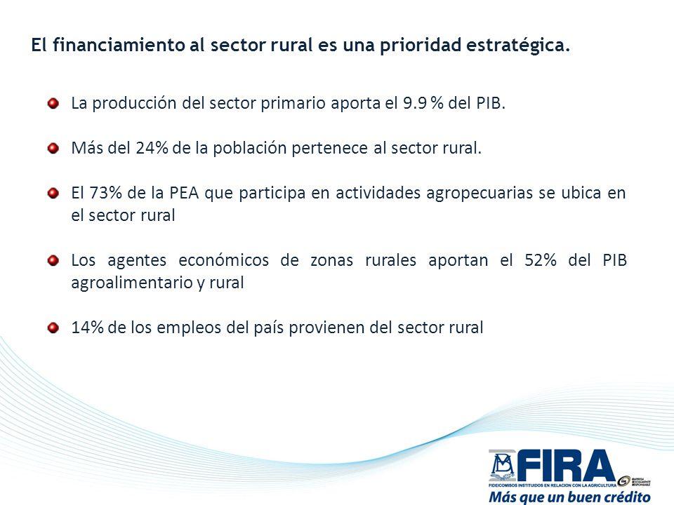 El financiamiento al sector rural es una prioridad estratégica.