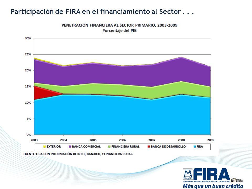 Participación de FIRA en el financiamiento al Sector . . .