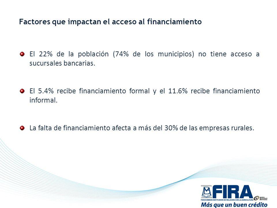 Factores que impactan el acceso al financiamiento