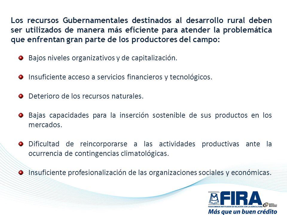 Los recursos Gubernamentales destinados al desarrollo rural deben ser utilizados de manera más eficiente para atender la problemática que enfrentan gran parte de los productores del campo: