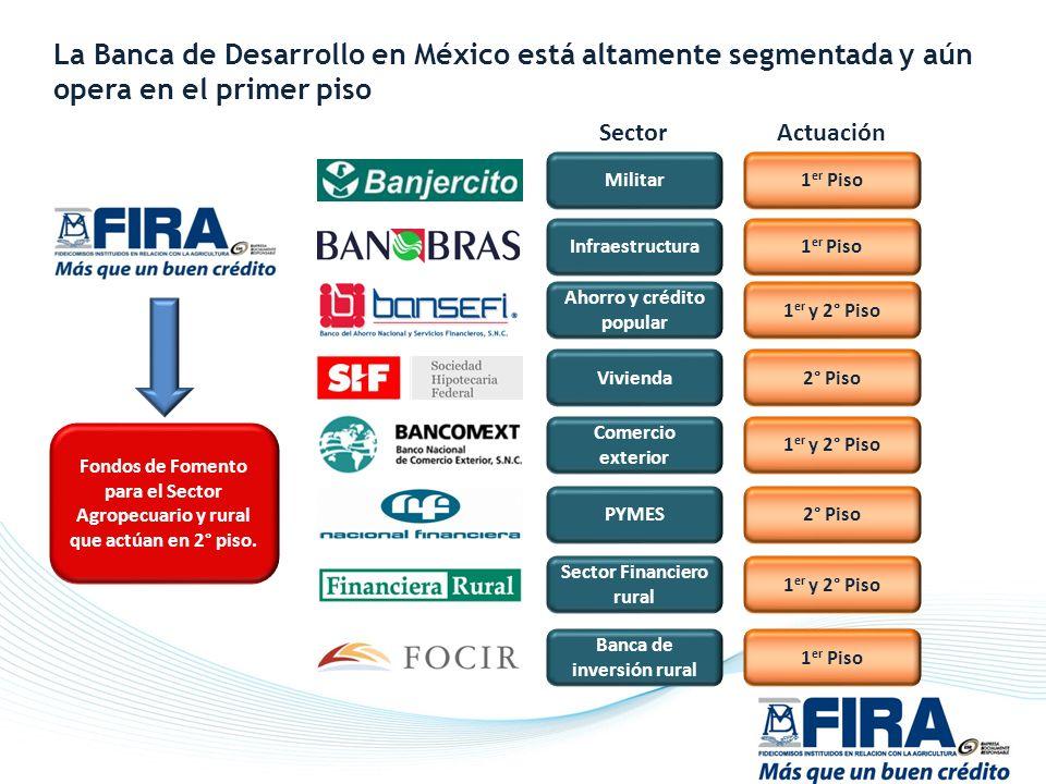 La Banca de Desarrollo en México está altamente segmentada y aún opera en el primer piso