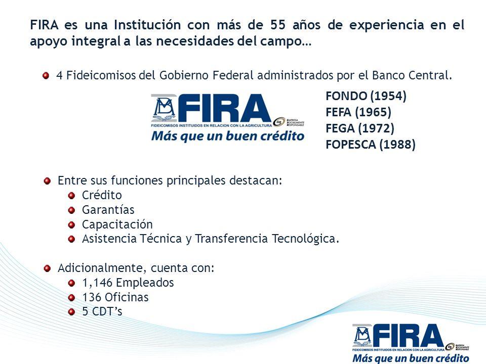 FIRA es una Institución con más de 55 años de experiencia en el apoyo integral a las necesidades del campo…