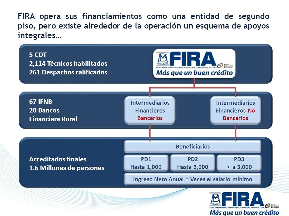 FIRA opera sus financiamientos como una entidad de segundo piso, pero existe alrededor de la operación un esquema de apoyos integrales…
