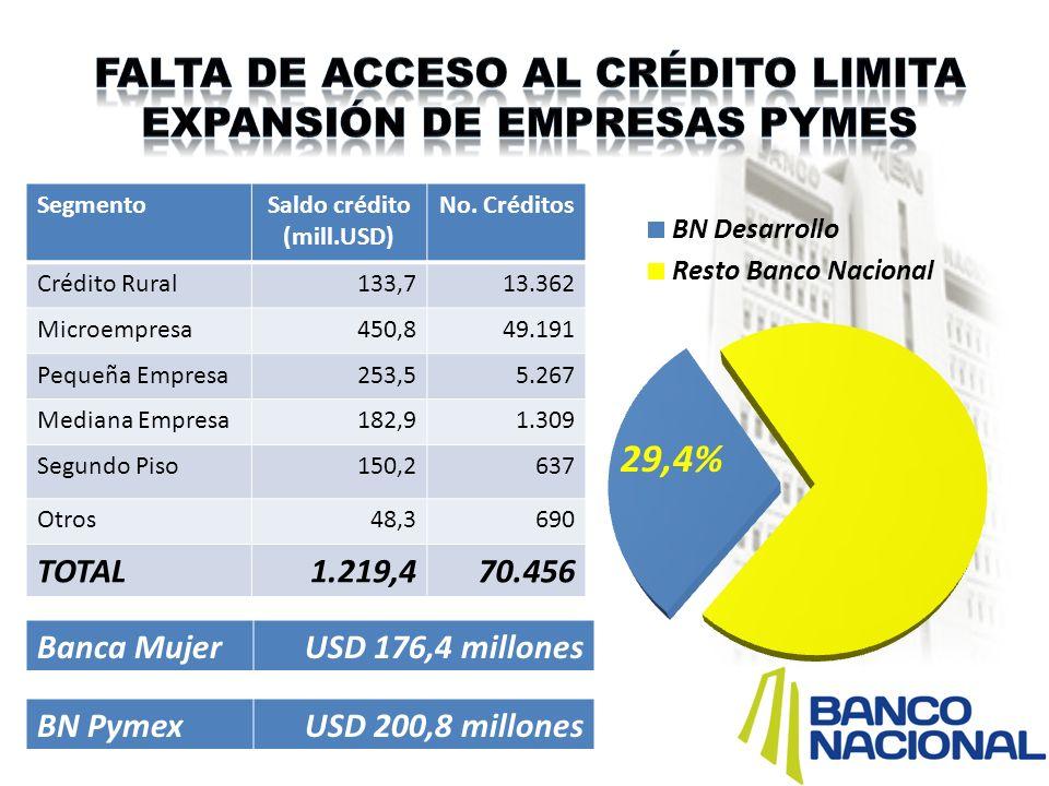 Falta de acceso al crédito limita expansión de empresas pymes