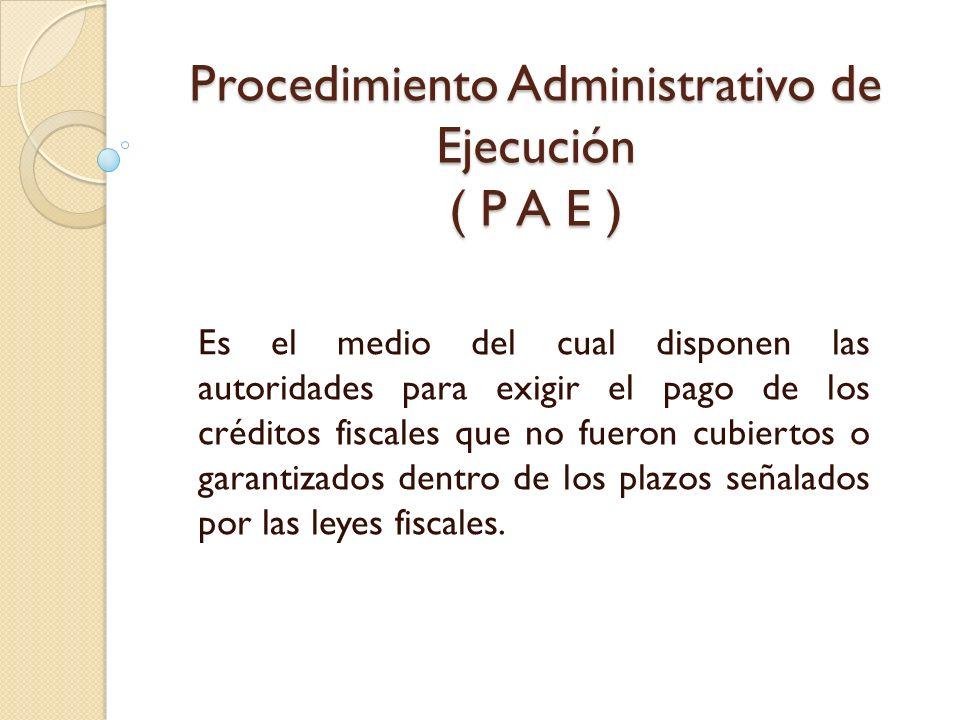 Procedimiento Administrativo de Ejecución ( P A E )