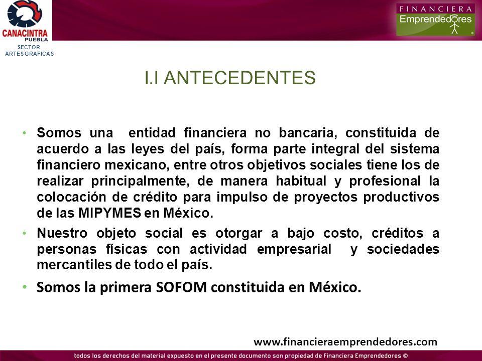 I.I ANTECEDENTES Somos la primera SOFOM constituida en México.