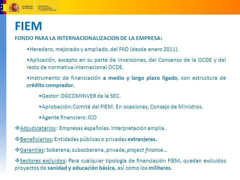 FIEM FONDO PARA LA INTERNACIONALIZACION DE LA EMPRESA: