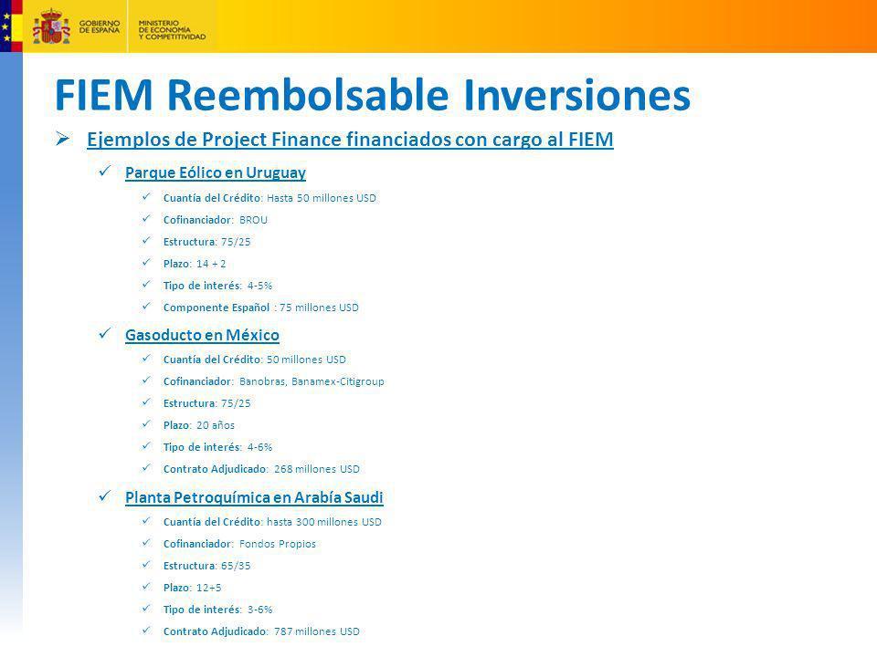 FIEM Reembolsable Inversiones