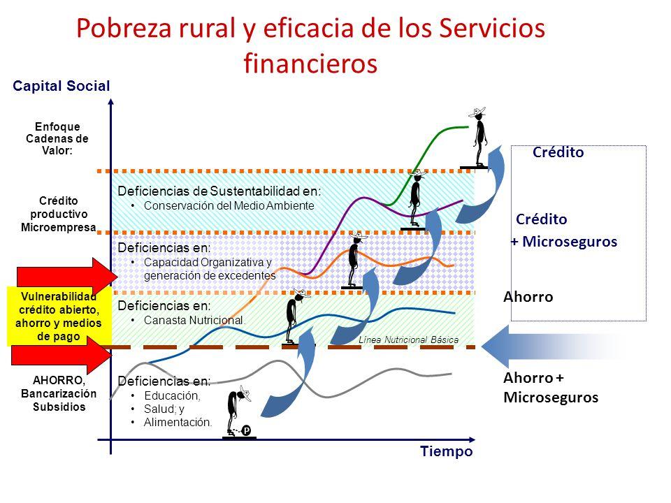 Pobreza rural y eficacia de los Servicios financieros